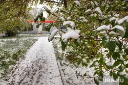 Первый снег. Екатеринбург, первый снег, осень, деревья в снегу, снегопад, зима