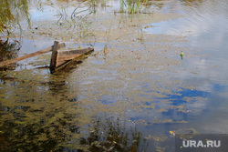 Набережная реки Тобол Курган, берег реки