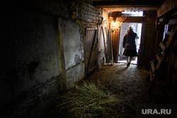 Деревня Корзуновка Ачитского района Свердловской области, сарай, хлев