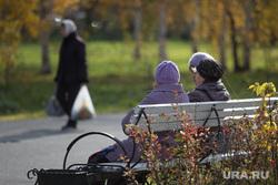 Клипарт. Курган, пенсионерки, бабушки на скамейке