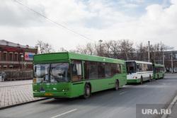 Автобусы. Тюмень , общественный транспорт, автобусы