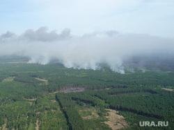 Пресс-конференция МЧС Курган, лес горит, лесной пожар, вид сверху