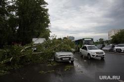 Упавшие деревья после урагана. Тюмень, автомобиль, упавшее дерево, дерево упало на машину