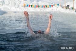 Окружной турнир по Зимнему плаванию. Сургут, моржи, заплыв, прорубь, зимнее плавание, зож
