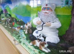 Новая больница. Детская поликлиника. Педиатрия. Екатеринбург, доктор айболит