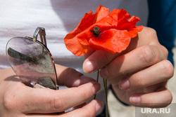 Виды Лимассола, Гирне, Куриона и Продромоса. ТРСК и Республика Кипр, цветок, мак, темные очки, солнцезащитные очки
