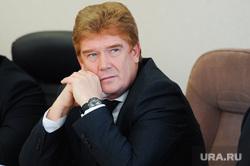 Выборы главы города Челябинска, елистратов владимир