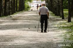 Тополиный пух в Екатеринбурге, пенсионер, аллея, тополиный пух, скандинавская ходьба