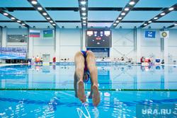 Кубок Мира по водному поло. Сборные России и Испании. Сургут, бассейн, прыжок в воду, ныряет