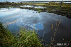 Нарушения на Тяновском месторождении. Сургут, загрязнение природы, нефтяная пленка, экология