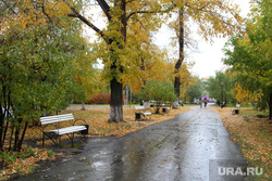 Курган, алеея горсада, осень