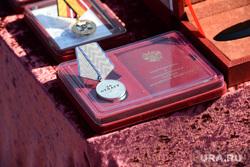 День 90-й гвардейской танковой дивизии в Чебаркуле, медаль за отвагу