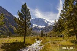 Клипарт unsplash. Irina Rassvetnaja, отдых, туризм, лес, отдых, туризм, горы, курорт, швейцария