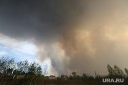 Горят леса. Село Иковка, дым, лесной пожар