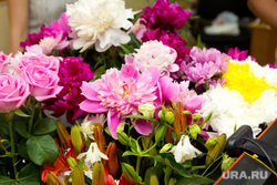 Клипарт. Санкт-Петербург, розы, букет, цветы, пионы
