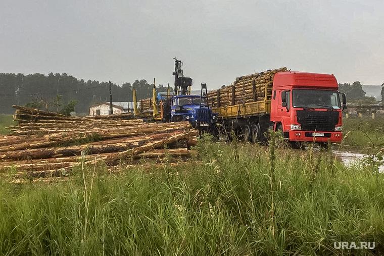 Незаконная вырубка леса в коттеджном поселке «Рассоха». Екатеринбург