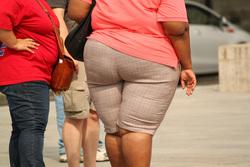 Клипарт. pixabay.com, ожирение, лишний вес, толстый