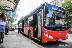 Новые автобусы. Пермь, остановка, автобус