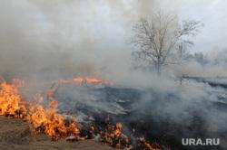 Лесные пожары. Учения МЧС. Челябинск, пожар, огонь, трава горит