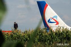 Самолет «Уральские авиалинии», совершивший аварийную посадку на кукурузном поле. Московская область, уральские авиалинии, самолет, аварийная посадка