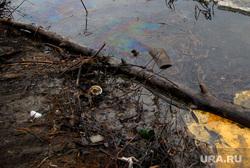 Река Тобол-нефтяное пятно. Курган, экология, нефтяное пятно