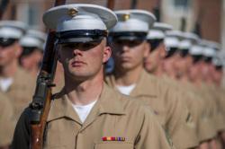 Клипарт pickupimage. miliman, солдаты, винтовка, парад, армия сша, американская армия