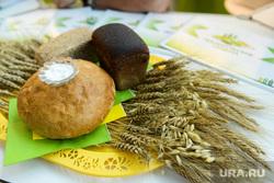 Открытие XXIV областной агропромышленной выставки «АГРО-2017». Челябинск, хлеб соль