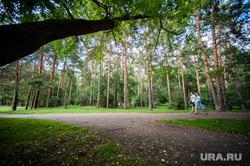 Объезд парковых зон Екатеринбурга в рамках рабочей группы по благоустройству, лето, парк зеленая роща