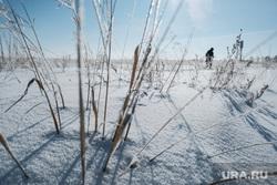 Контрольно-пропускной пункт «Звериноголовское». Звериноголовский район. , зима, холод, потерялся зимой, ушел в лес, ушел в степь