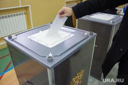 Выборы губернатора Тюменской области. Нижневартовск, урна для голосования, выборы