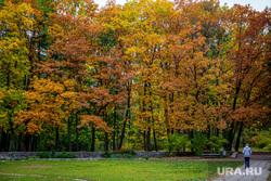 Виды города. Екатеринбург, парк, желтая листва, осень