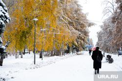 Клипарт по теме Погода. Челябинск., тротуар, снег, пешеход, желтые листья