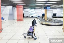 Выдача багажа в Международном аэропорту «Кольцово». Екатеринбург, аэропорт, кольцово, чемоданы, туризм, сумки, путешествия, багажное отделение, розыск багажа, транспортер, утерянный багаж, путешествие