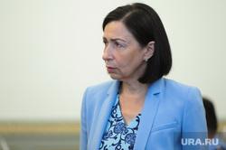 Заседание правительства Челябинской области. Челябинск, портрет, котова наталья