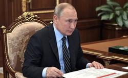 Клипарт. Сайт президента России, путин владимир