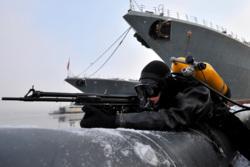 В главной базе Северного флота впервые заступил на боевое дежурство новый отряд по борьбе с подводными диверсантами, десант, военные, оружие, водолаз