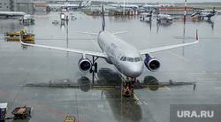 Выдача багажа в Международном аэропорту «Кольцово». Екатеринбург, аэропорт, аэрофлот, аэродром, шереметьево, терминал B, взлетное поле, терминал б
