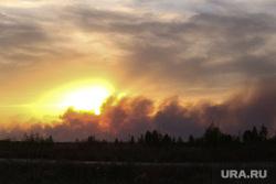 Горят леса. Село Иковка, лесной пожар