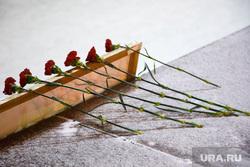 «Вахта памяти», годовщина гибели Немцова, гвоздики, память