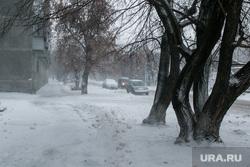 В городе снег и ветер. Курган, снег, зима, ветер, метель, пурга