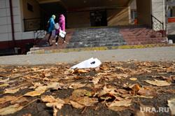 Школа в поселке Боровский, где случился конфликт учеников с учителем. Тюмень, школа, бумажный самолетик