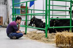 Сельскохозяйственная выставка. Тюмень, сельское хозяйство