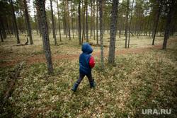 Ханты Сургутского района, семья Клима Кантерова. Лянтор, лес, сосновый бор, тайга, ребенок в лесу