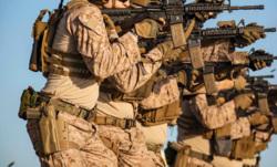 Клипарт pickupimage. miliman, армия, военные, солдаты, оружие, сша, спецназ, строй, солдат, армия сша, американская армия
