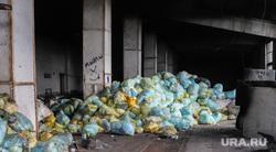Крематорий. Оцепление. Курган , отходы, мусор в мешках, свалка мусора, мусор в пакетах