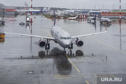 Выдача багажа в Международном аэропорту «Кольцово». Екатеринбург, самолет, аэропорт, аэрофлот, аэродром, шереметьево, дождь, терминал B, взлетное поле, терминал б