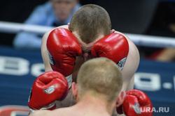 Открытие Академии единоборств РМК. Екатеринбург, единоборства, спорт, бокс, поединок