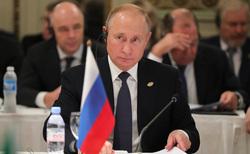 Путин, Абэ, портрет, путин владимир