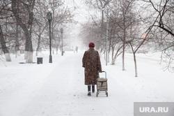 Снегопад. Тюмень, снег, зима, метель, снегопад, бабушка с тележкой