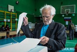 Единый день голосования 2019. Курган, пенсионер, избирательная комиссия, дед, старик, очки, коиб, выборы, спортивный зал, пожилой мужчина, бюллетени, избирательный участок, школьный спортзал, голосование, избиратели, избиратель